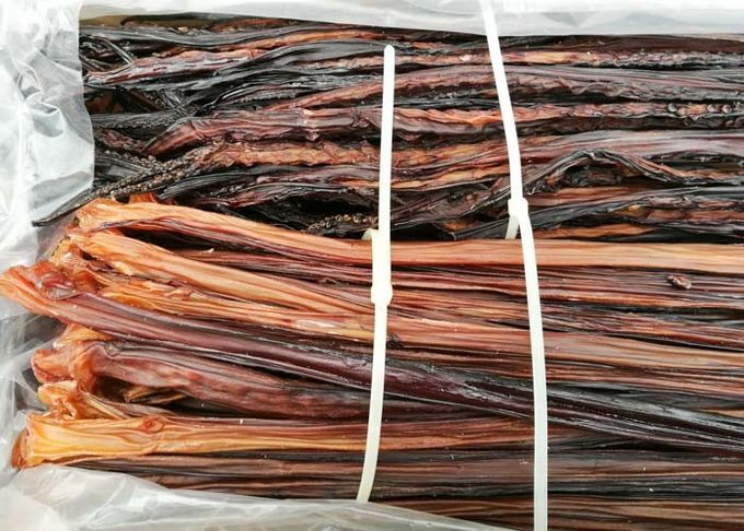 Sweet Prepared Shredded Squid Long Tentacle 20% - 24%  Moisture